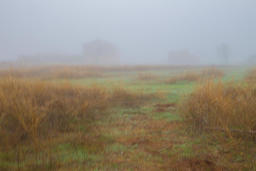 Fotografía pictórica un día de niebla, Braulio Moreno