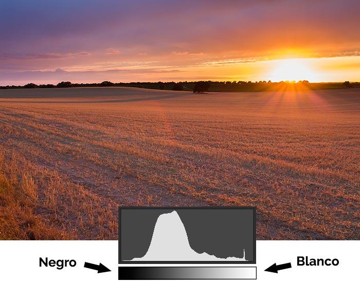 Histograma de una fotografía donde la mayor parte de los píxeles tienen un valor intermedio un poco oscuro