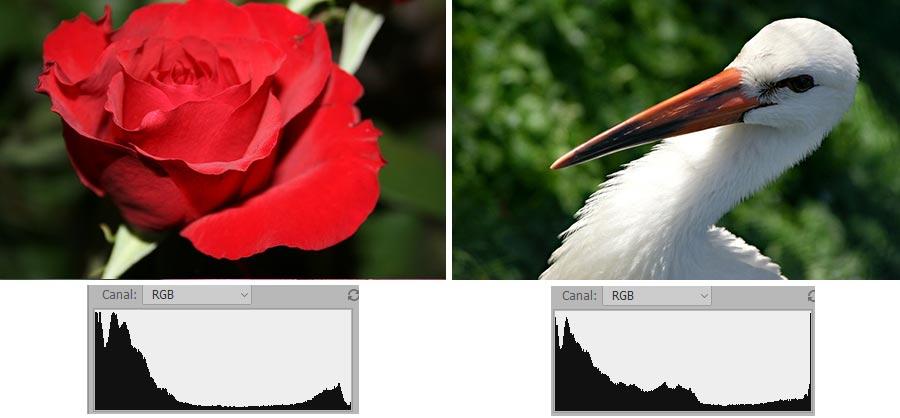 Histograma parecido en fotografías muy distintas