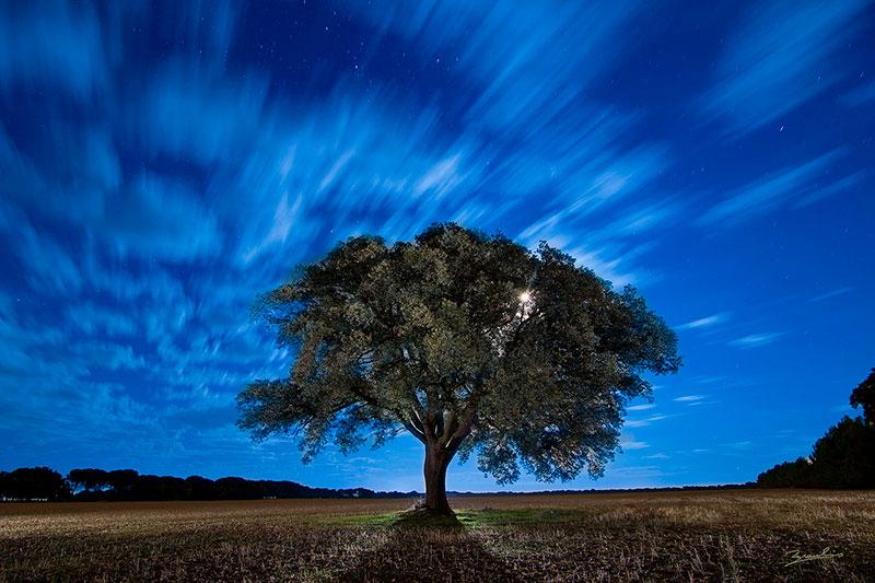 fotografía nocturna, lightpainting, carrasca