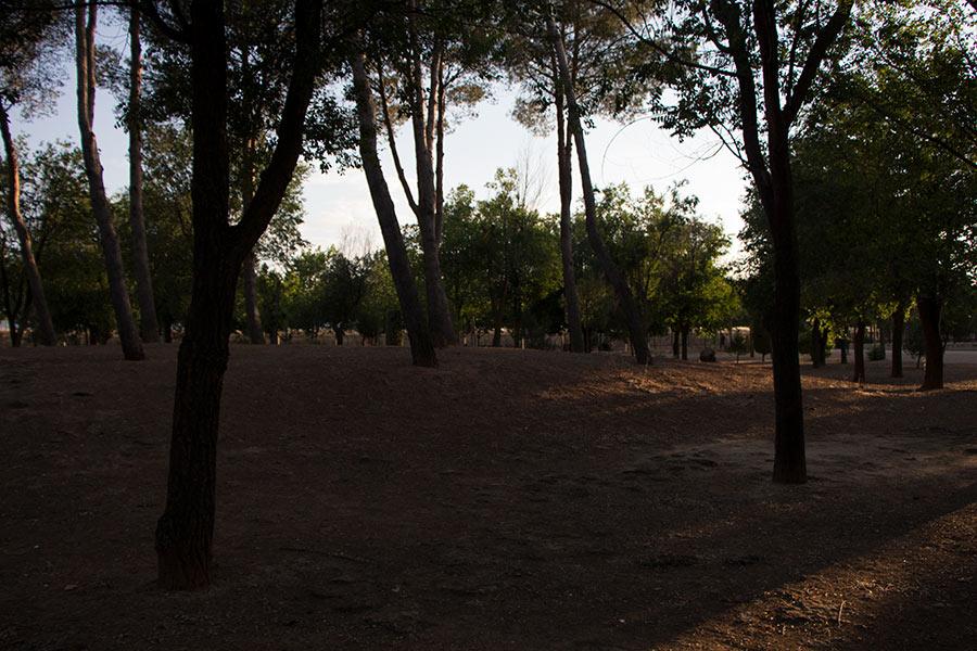 Fotografía al atardecer en un parque, imagen subexpuesta