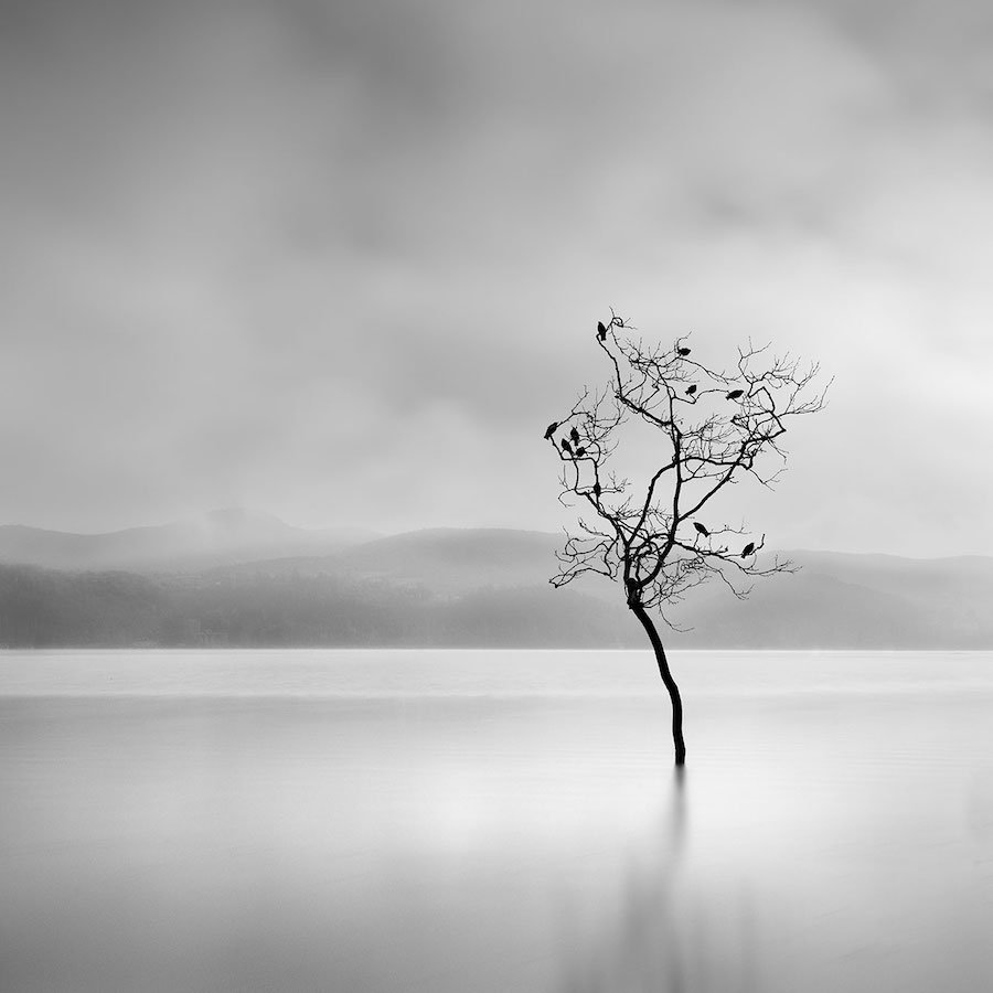 Fotografía George Digalakis