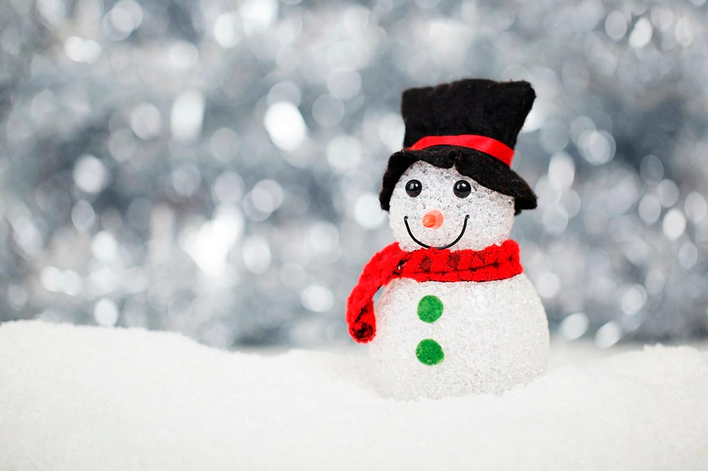 Fotografía de navidad, muñeco de nieve