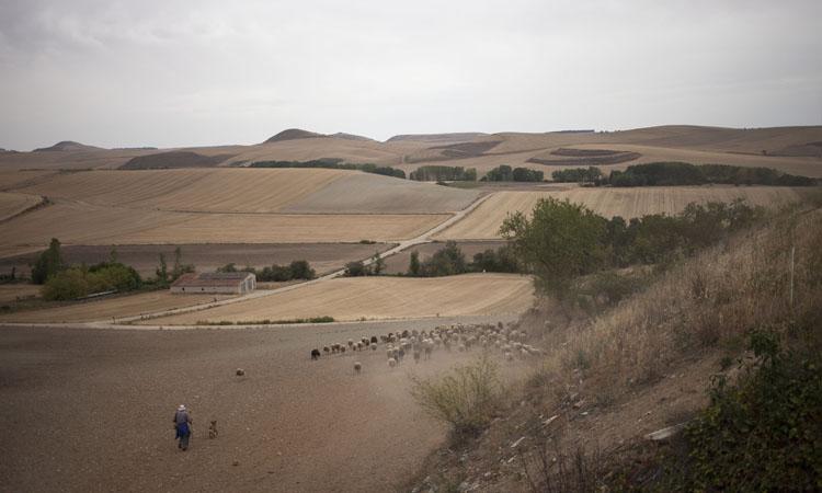 Fotografía de Sandra García (Proyecto: Caminito)
