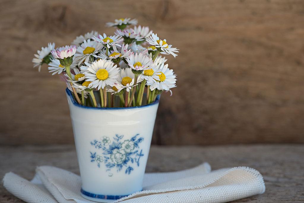 Foto pequeña maceta con flores
