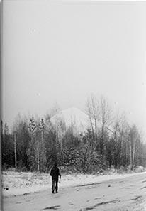 Libro: 36 views (Fyodor Telkov)