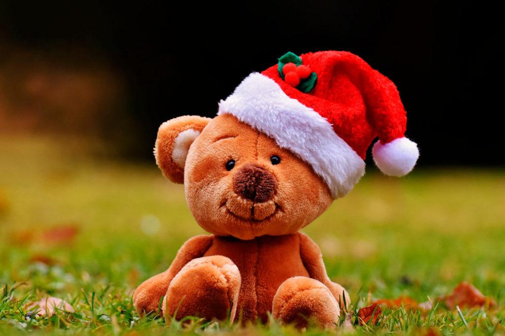 Foto osito con gorro de navidad