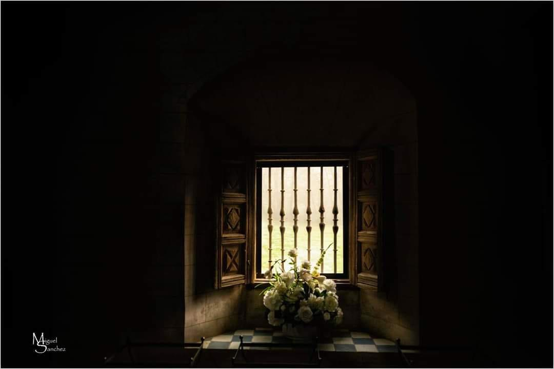 Flores en la ventana, Miguel Ángel Sanchez