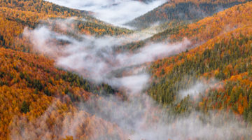 172. La fotografía de naturaleza y paisaje de Eduardo Blanco